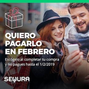 Paga en Febrero